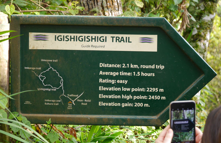 Igishigishigi Trail