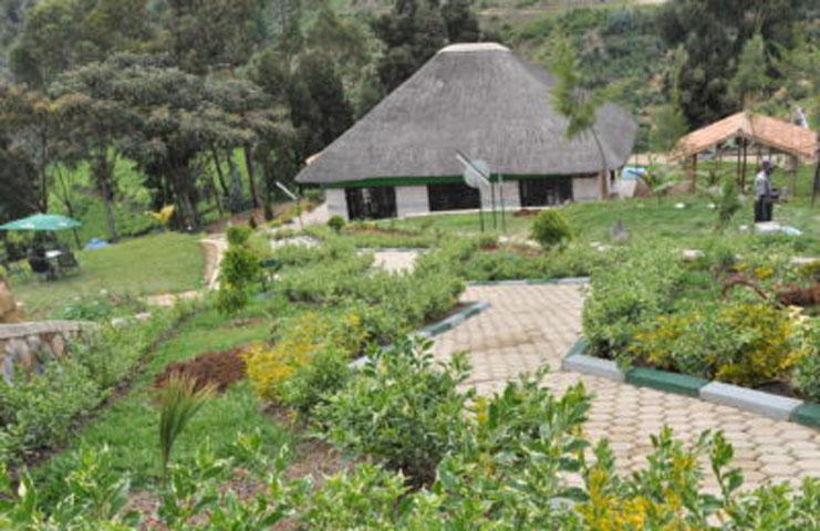 Nyungwe Nziza Eco lodge