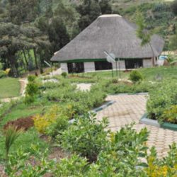 Where to stay at Nyungwe National Park.